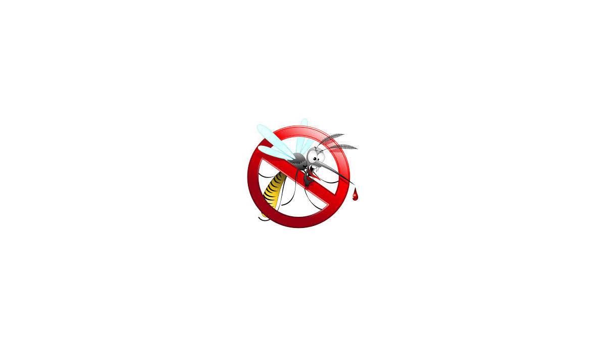 Rimedi efficaci contro le zanzare